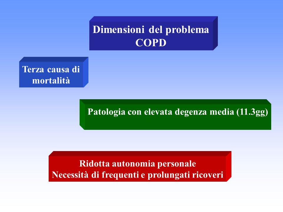 Dimensioni del problema COPD
