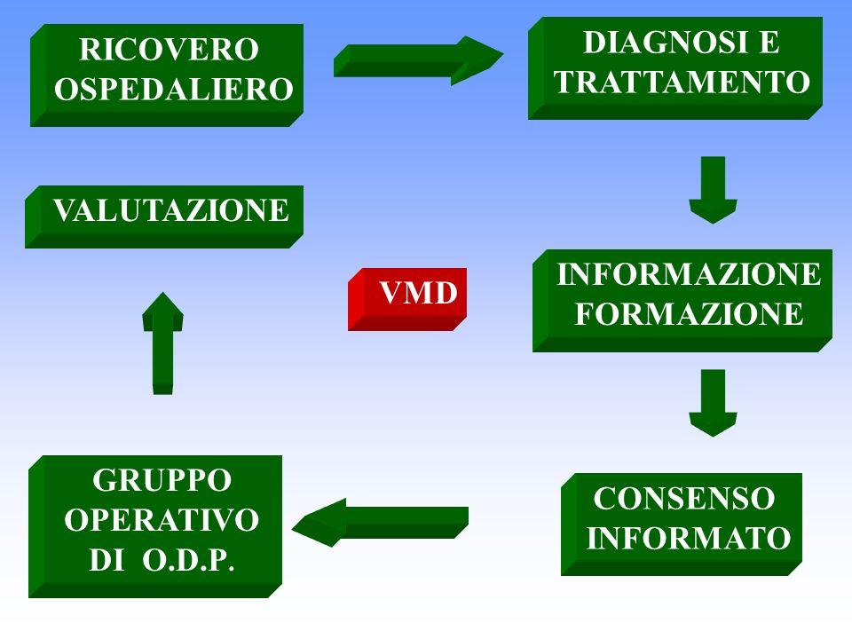 DIAGNOSI E TRATTAMENTO. RICOVERO. OSPEDALIERO. VALUTAZIONE. INFORMAZIONE. FORMAZIONE. VMD. GRUPPO OPERATIVO.