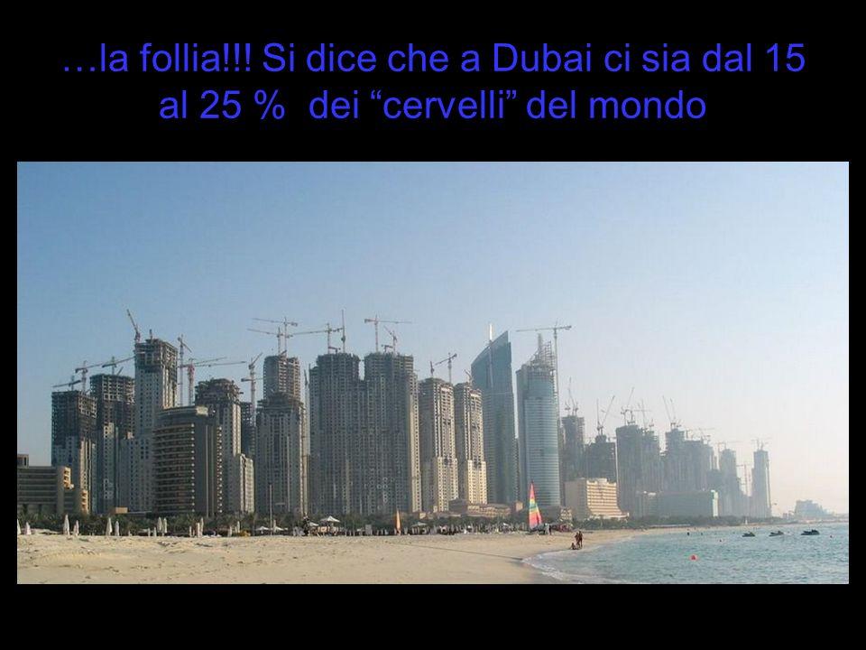 …la follia!!! Si dice che a Dubai ci sia dal 15 al 25 % dei cervelli del mondo