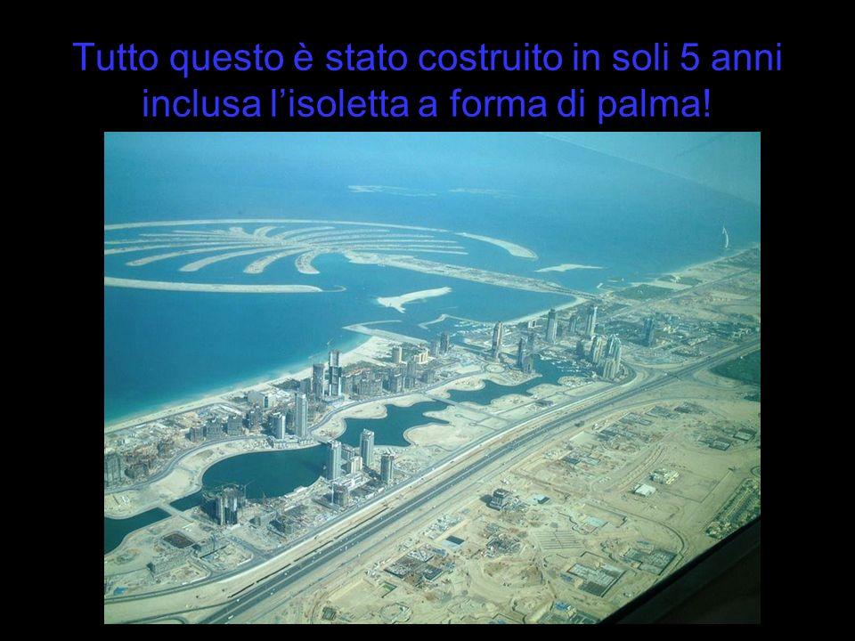 Tutto questo è stato costruito in soli 5 anni inclusa l'isoletta a forma di palma!