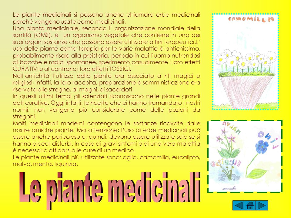 Le piante medicinali si possono anche chiamare erbe medicinali perché vengono usate come medicinali.