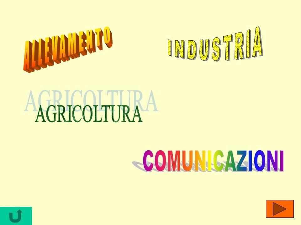 INDUSTRIA ALLEVAMENTO AGRICOLTURA COMUNICAZIONI