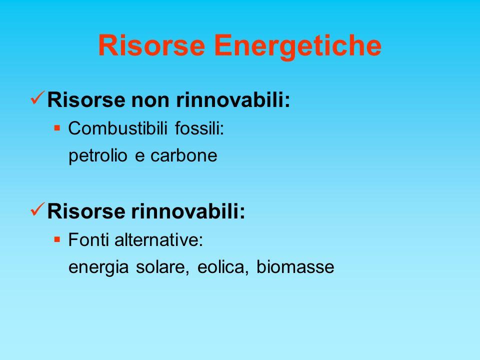 Risorse Energetiche Risorse non rinnovabili: Risorse rinnovabili: