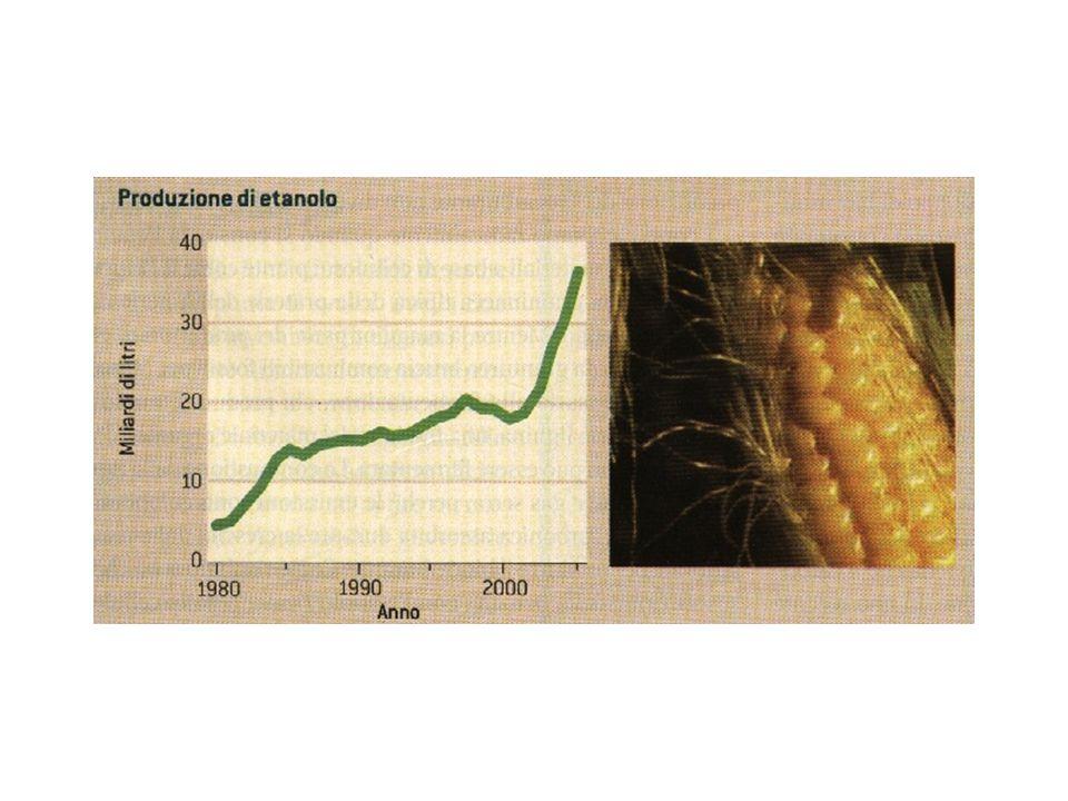 La produzione di etanolo, il biocarburante più diffuso, è arrivata nel 2005 a 36,5 miliardi di litri, la maggior parte distillati da granturco coltivato in America.