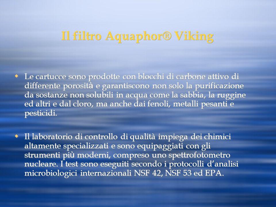 Il filtro Aquaphor® Viking