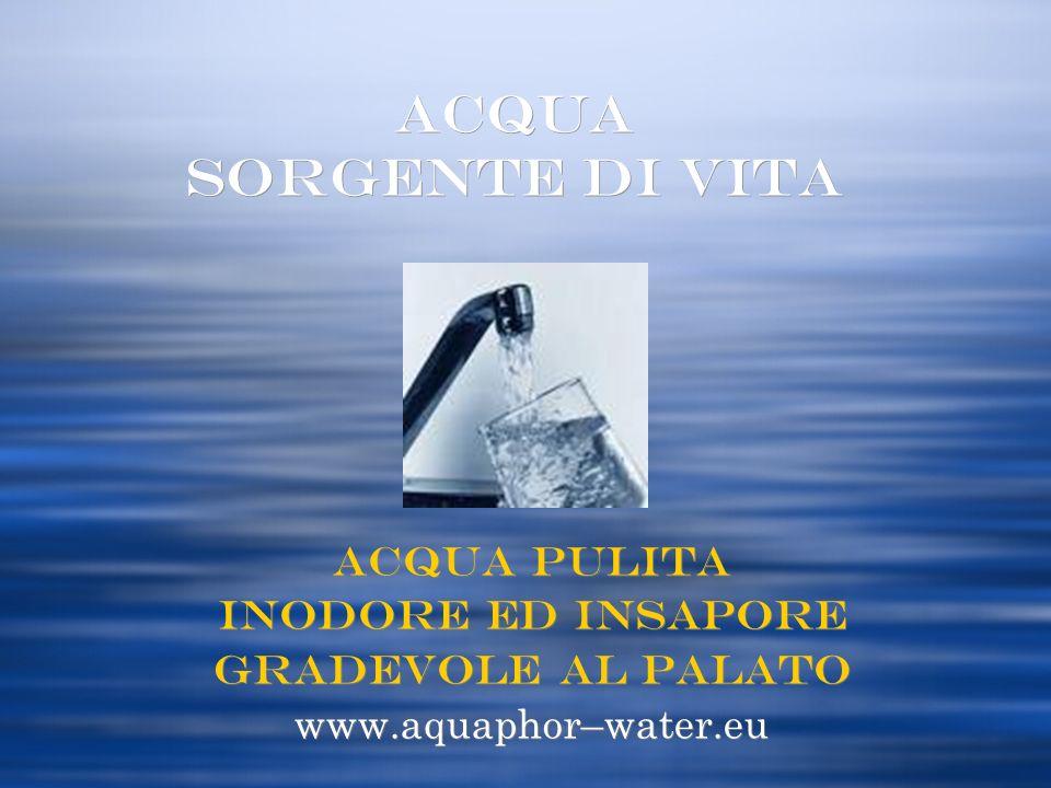 ACQUA SORGENTE di Vita Acqua Pulita inodore ed insapore
