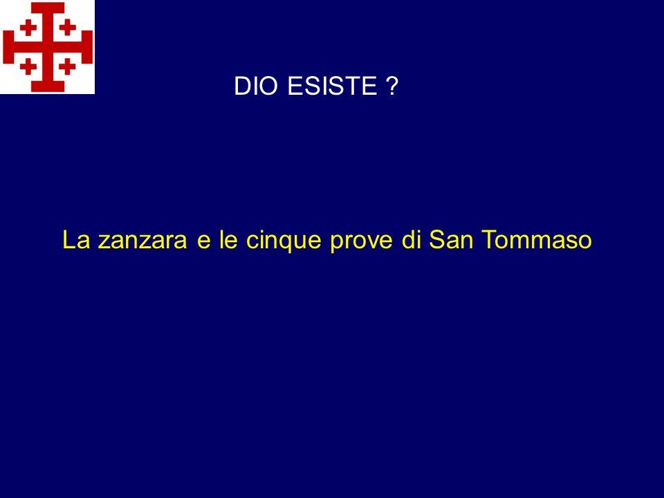 DIO ESISTE La zanzara e le cinque prove di San Tommaso