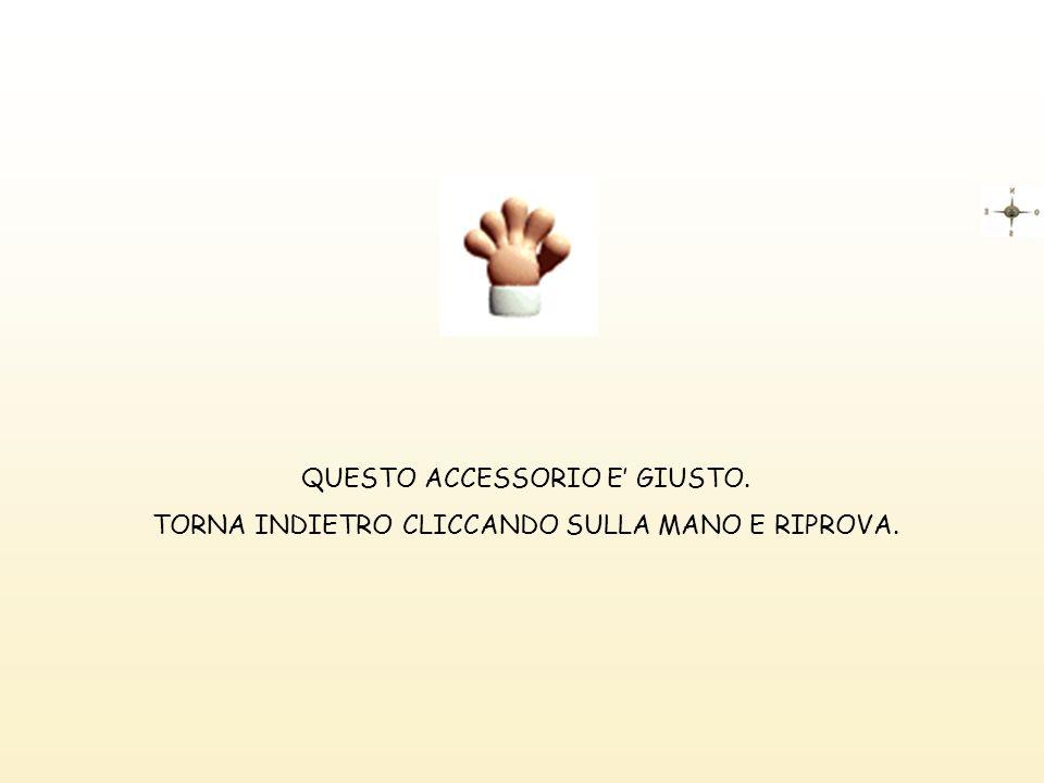 QUESTO ACCESSORIO E' GIUSTO.