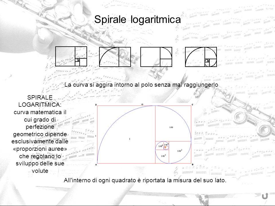 All interno di ogni quadrato è riportata la misura del suo lato.