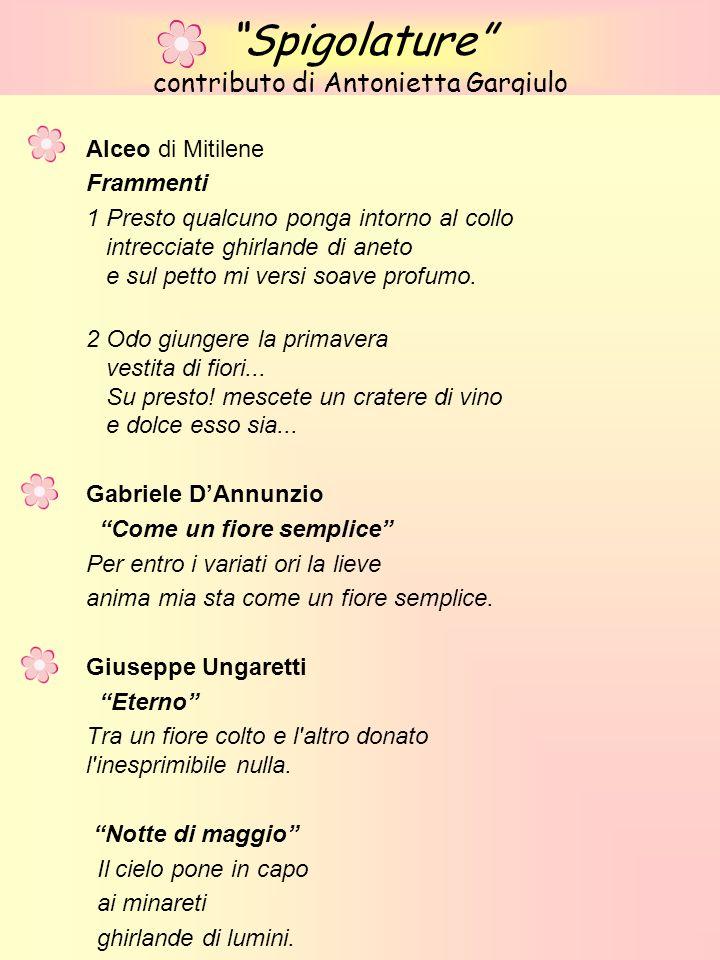 Spigolature contributo di Antonietta Gargiulo