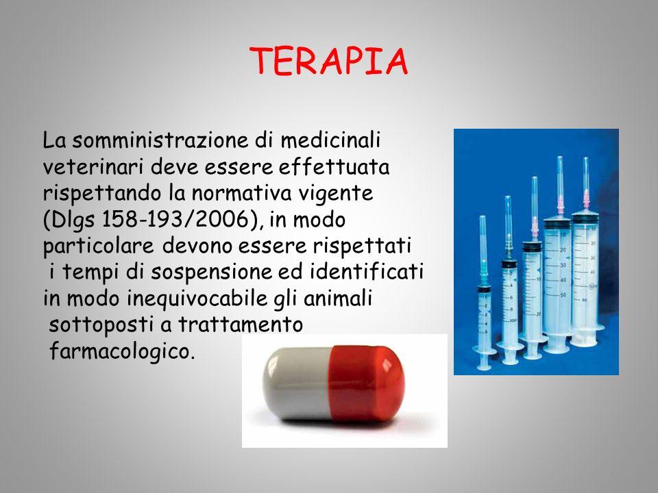 TERAPIA La somministrazione di medicinali