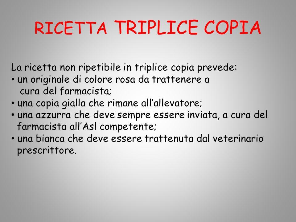 RICETTA TRIPLICE COPIA