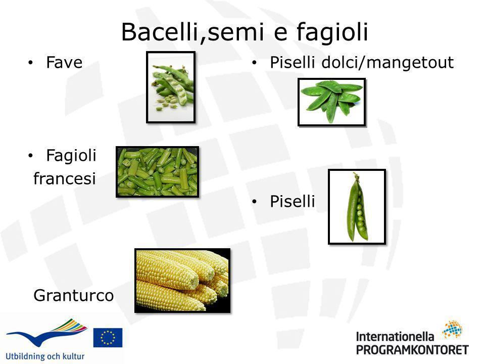 Bacelli,semi e fagioli Fave Fagioli francesi Granturco