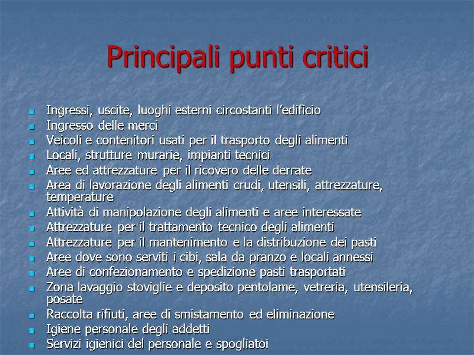 Principali punti critici