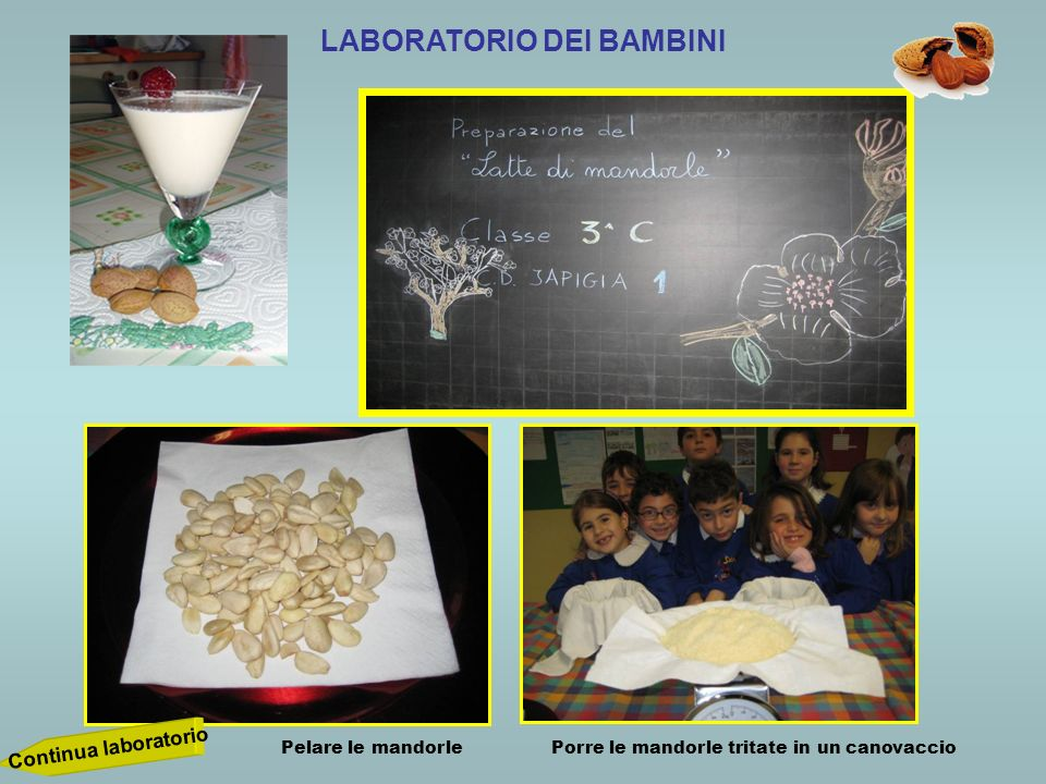 LABORATORIO DEI BAMBINI