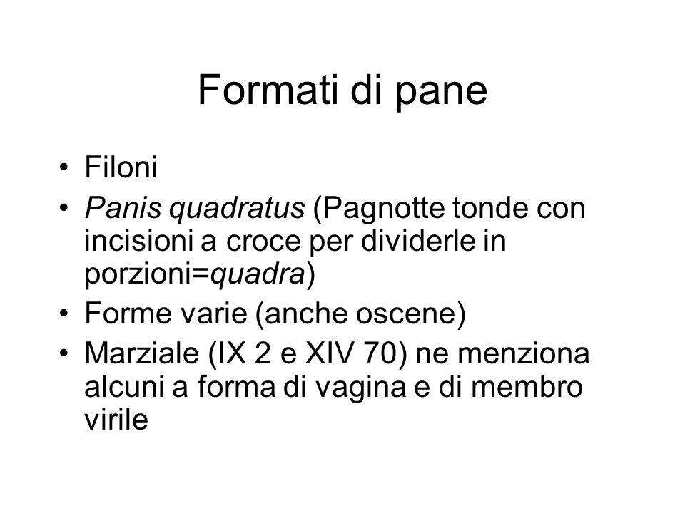 Formati di pane Filoni. Panis quadratus (Pagnotte tonde con incisioni a croce per dividerle in porzioni=quadra)