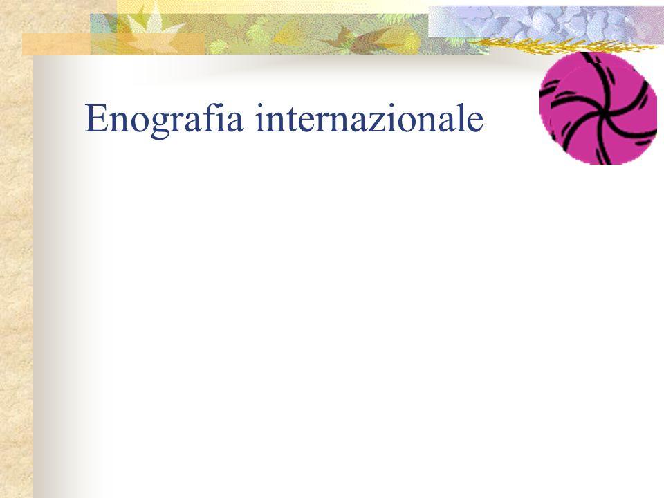 Enografia internazionale