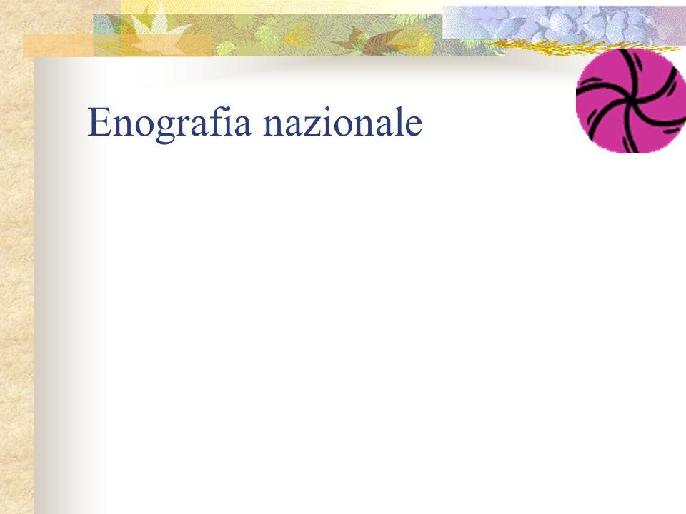 Enografia nazionale