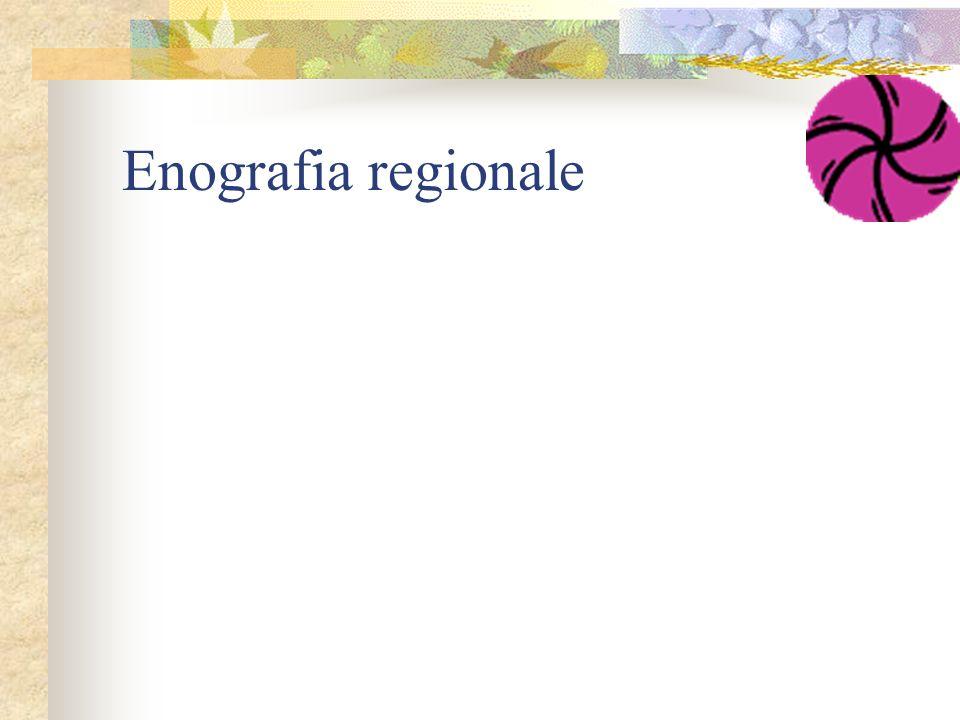 Enografia regionale