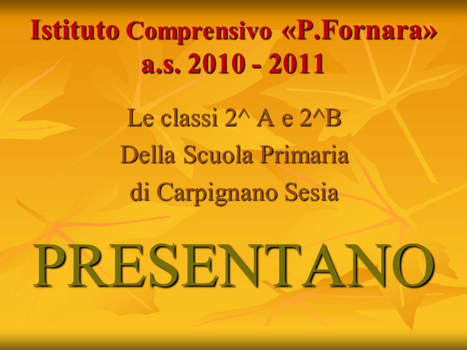 Istituto Comprensivo «P.Fornara» a.s. 2010 - 2011