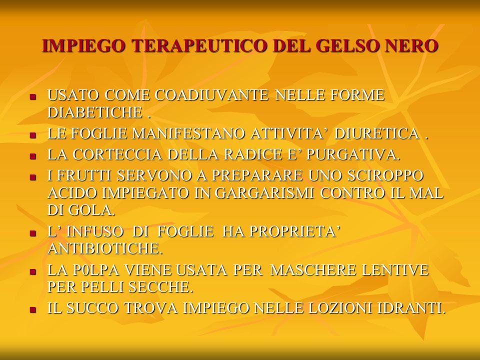 IMPIEGO TERAPEUTICO DEL GELSO NERO