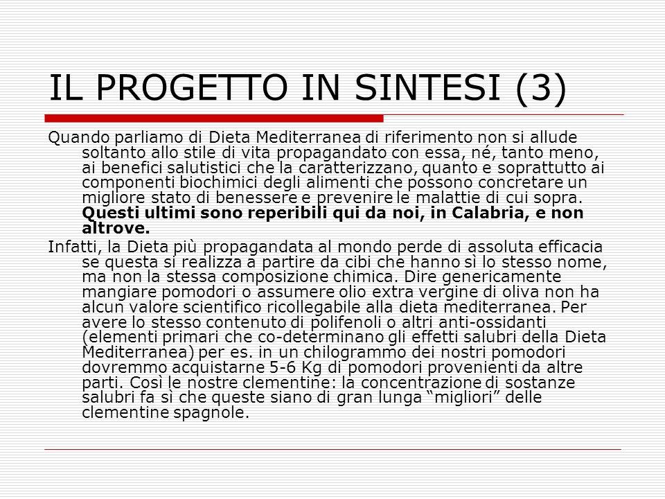 IL PROGETTO IN SINTESI (3)