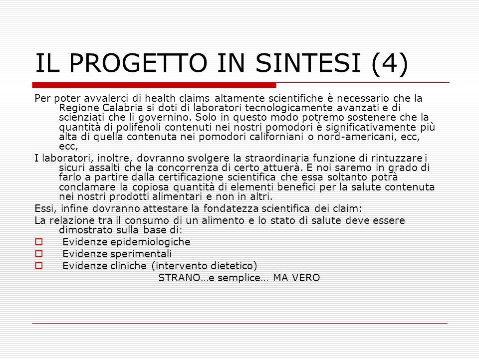IL PROGETTO IN SINTESI (4)