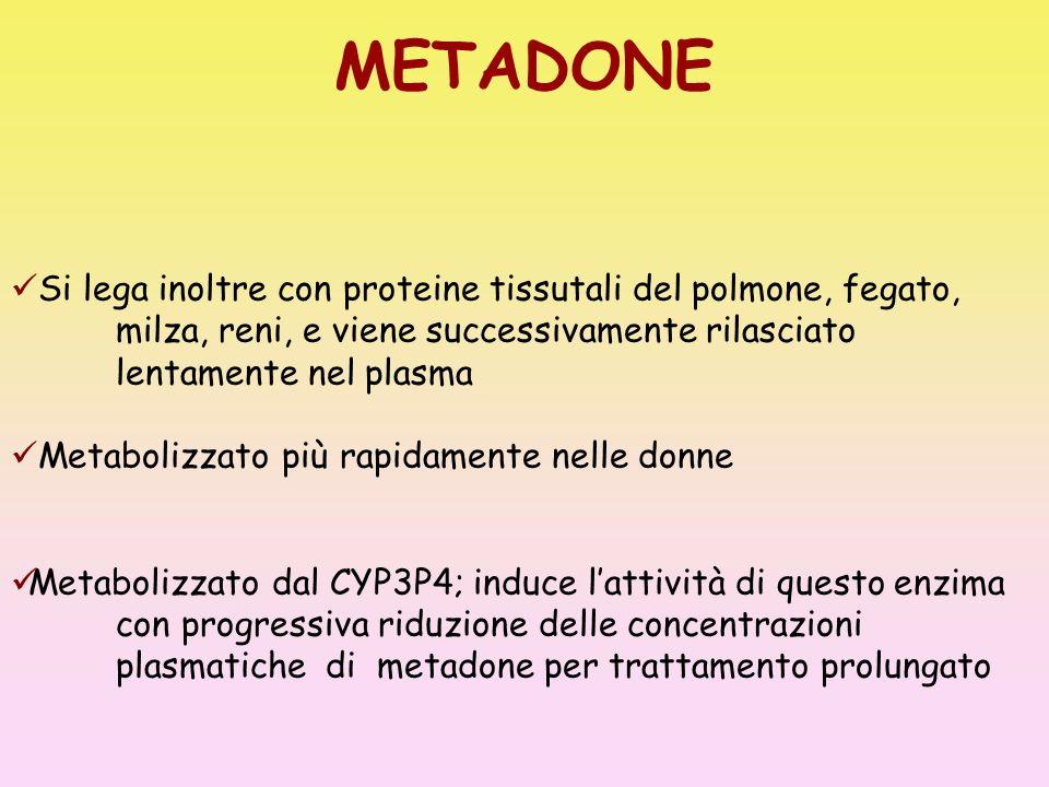 METADONE Si lega inoltre con proteine tissutali del polmone, fegato, milza, reni, e viene successivamente rilasciato lentamente nel plasma.