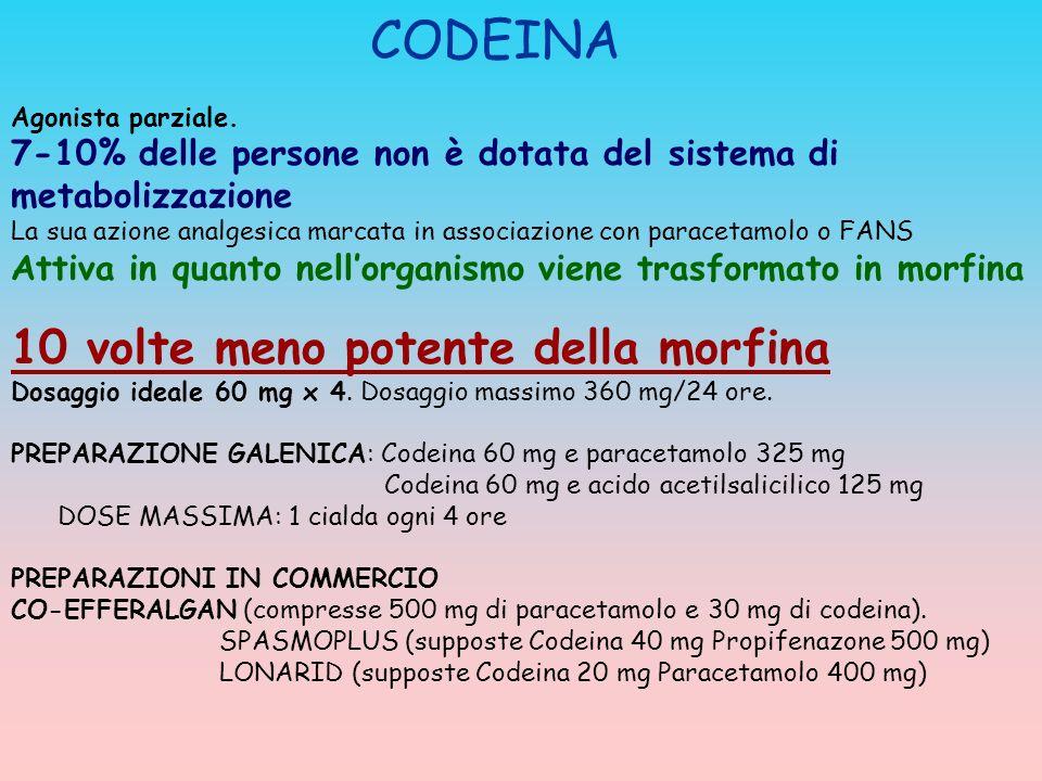 CODEINA 10 volte meno potente della morfina