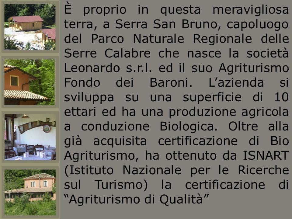 È proprio in questa meravigliosa terra, a Serra San Bruno, capoluogo del Parco Naturale Regionale delle Serre Calabre che nasce la società Leonardo s.r.l.