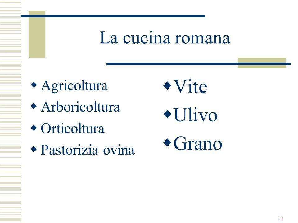 Vite Ulivo Grano La cucina romana Agricoltura Arboricoltura