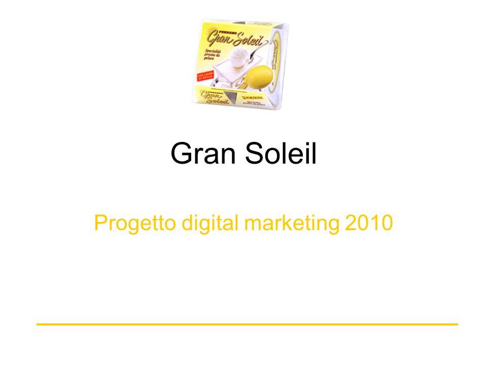 Progetto digital marketing 2010