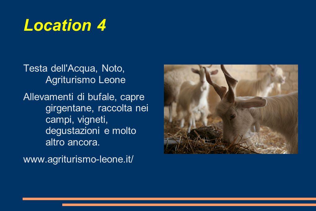 Location 4 Testa dell Acqua, Noto, Agriturismo Leone