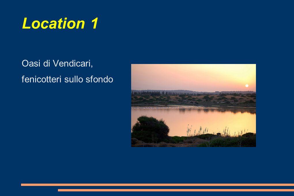Location 1 Oasi di Vendicari, fenicotteri sullo sfondo