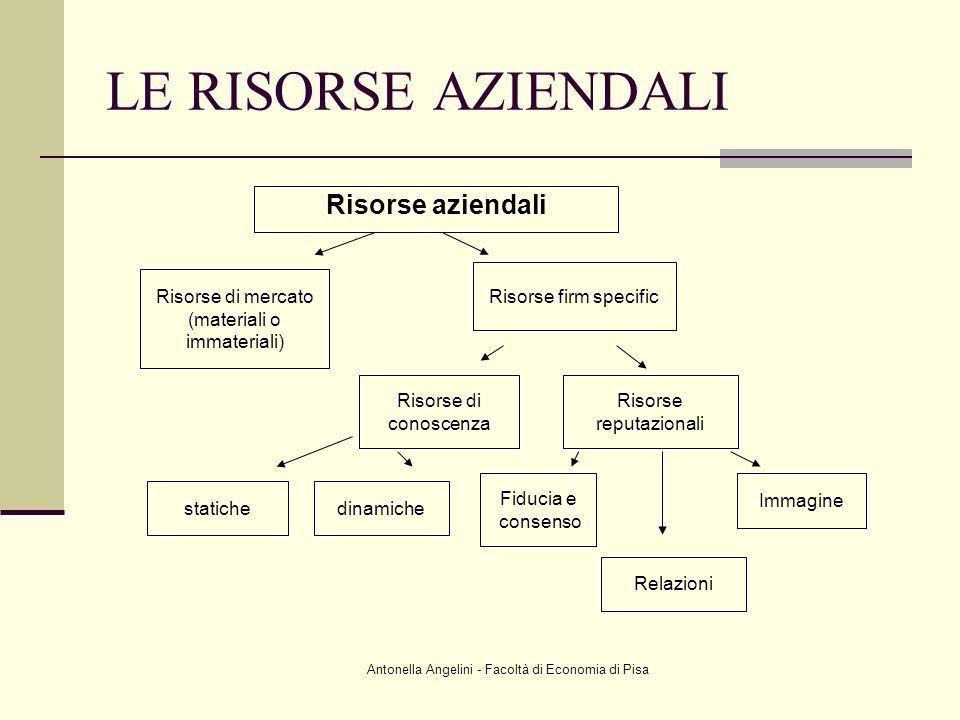 LE RISORSE AZIENDALI Risorse aziendali Risorse firm specific