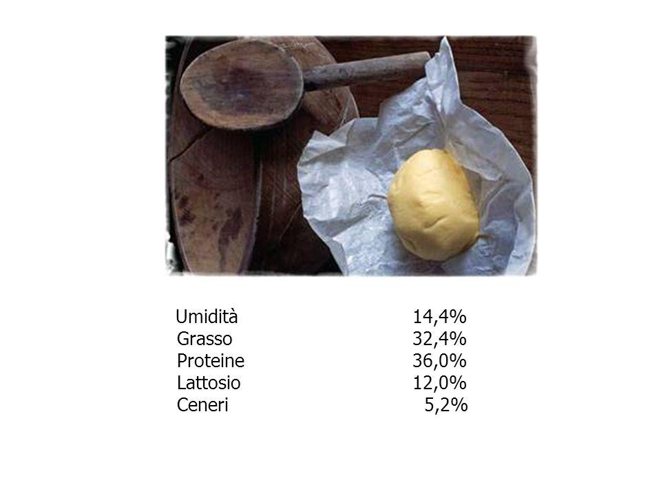 Umidità 14,4% Grasso 32,4% Proteine 36,0% Lattosio 12,0% Ceneri 5,2%