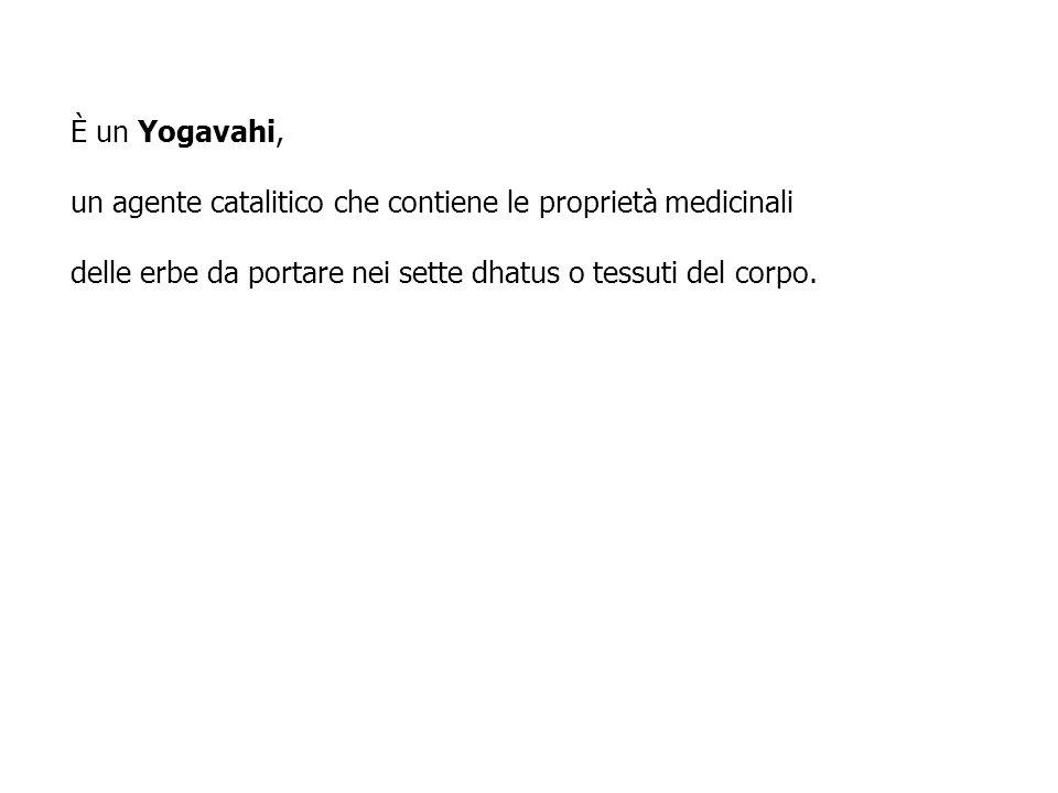È un Yogavahi, un agente catalitico che contiene le proprietà medicinali.