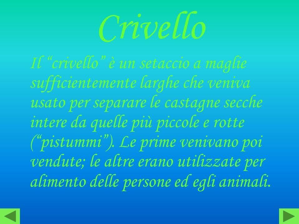 Crivello