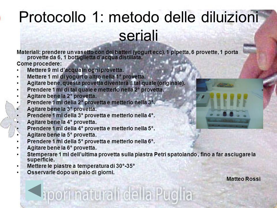 Protocollo 1: metodo delle diluizioni seriali
