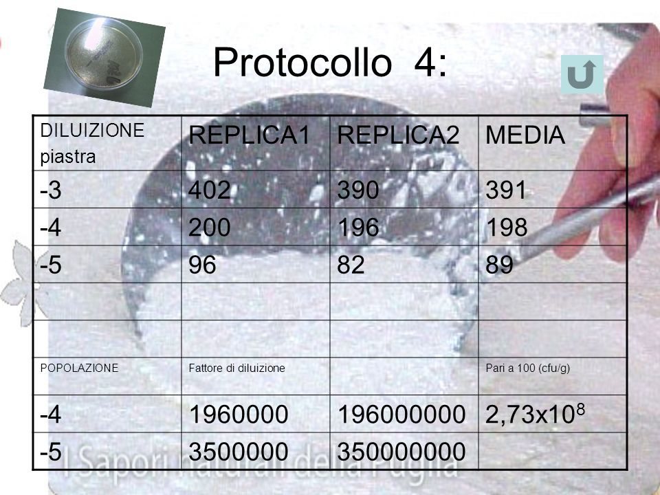 Protocollo 4: REPLICA1 REPLICA2 MEDIA -3 402 390 391 -4 200 196 198 -5