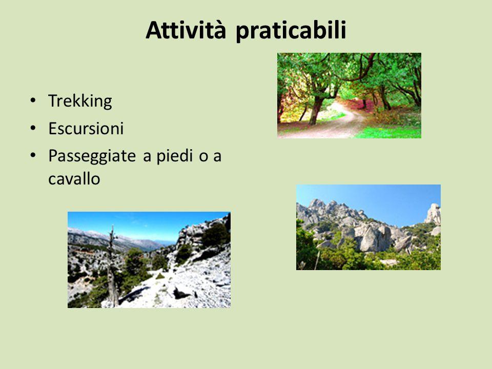 Attività praticabili Trekking Escursioni