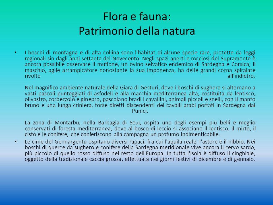 Flora e fauna: Patrimonio della natura