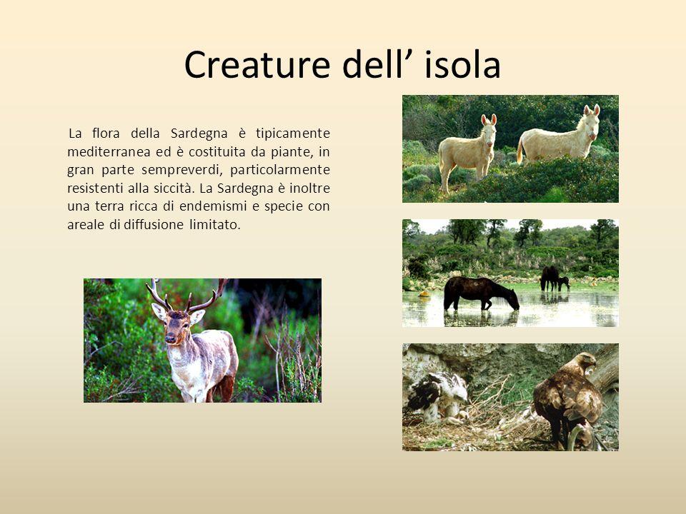 Creature dell' isola