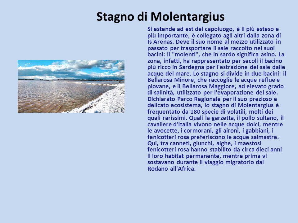 Stagno di Molentargius