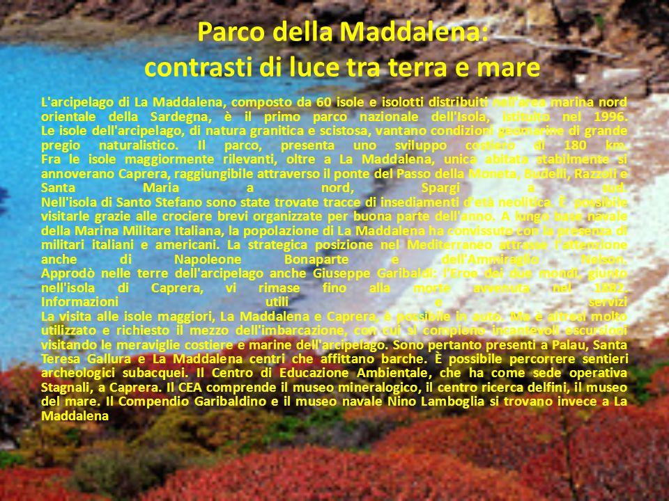 Parco della Maddalena: contrasti di luce tra terra e mare