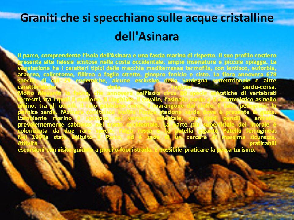 Graniti che si specchiano sulle acque cristalline dell Asinara