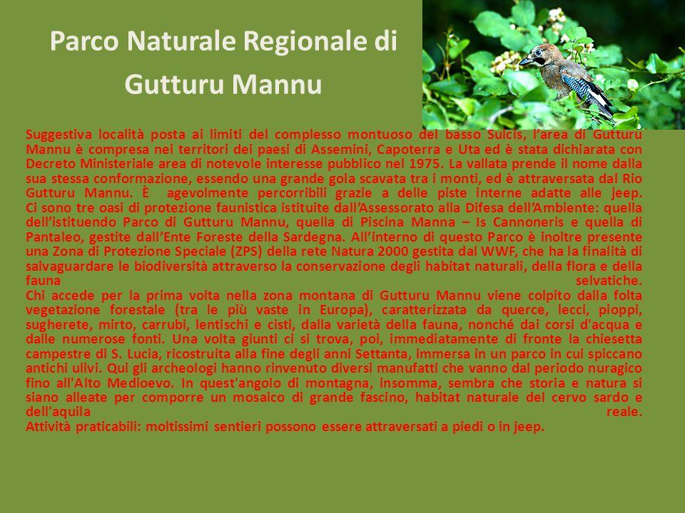Parco Naturale Regionale di Gutturu Mannu