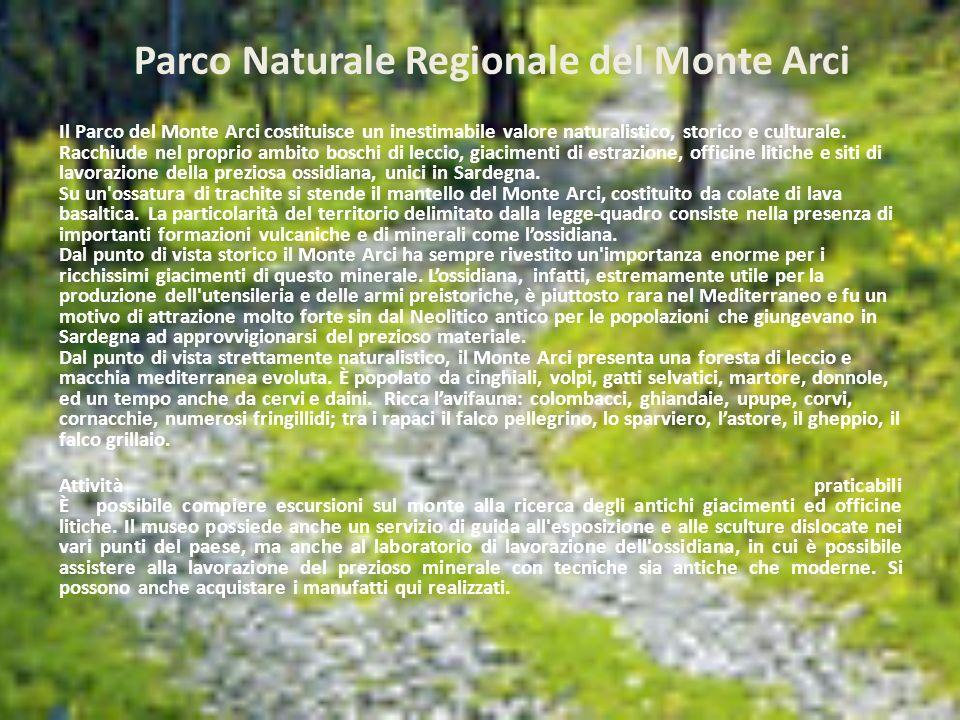 Parco Naturale Regionale del Monte Arci