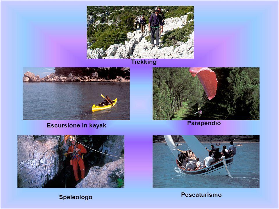 Trekking Parapendio Escursione in kayak Pescaturismo Speleologo
