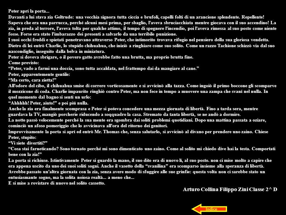 Arturo Collina Filippo Zini Classe 2^ D